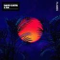 GUETTA, David & SIA - Flames