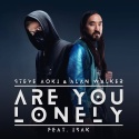AOKI, Steve & WALKER, Alan & ISAK - Are You Lonely